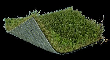 SoftLawn® Paspalum Pro | Landscape Turf